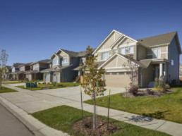 Street view of sidewalk and trees of Jensen Lake Showhomes now open